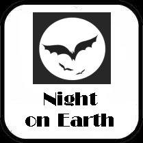 Night Owl Club Lounge
